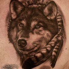 Dream catcher, wolf