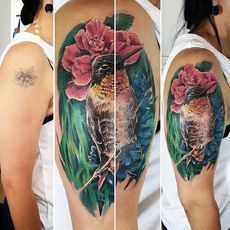 Hummingbird coverup