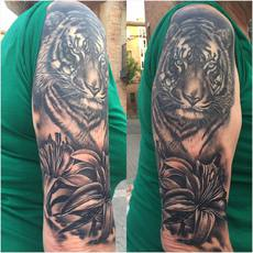 Realistic Tiger and Fleurs-de-Lis in Black and...