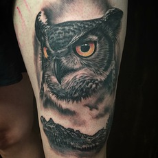 Realistic Owl and Mountains in Black and Gray
