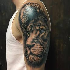 Realistic Lion Face in Black and Gray