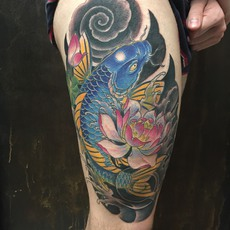 Japanese Koi Fish in Color with Flowers and Bac...