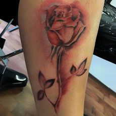 Rose freehand 1h 30min