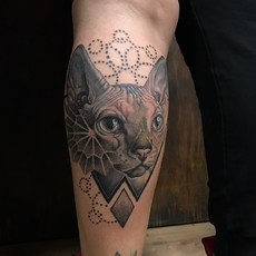 Realistic Sphinx Cat With Geometric Details