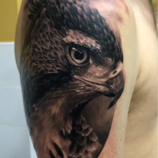 Eagle Realism Tattoo - Franky Lozano Tattoo