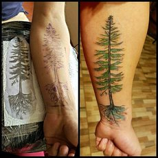 tree tattoo by raphael fernandez