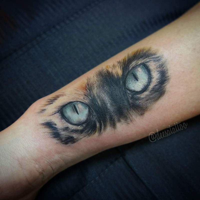 Ojos de gato for Tatoo gatos