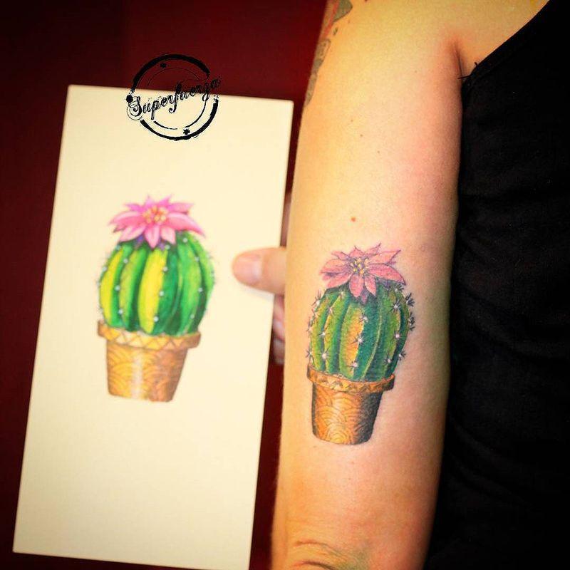 Tatuaje Cactus mini cactus full color